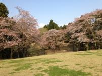 Photo 2014-04-09, 3 40 25 PM
