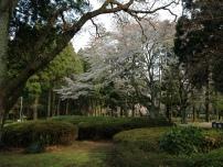 Photo 2014-04-09, 3 45 46 PM