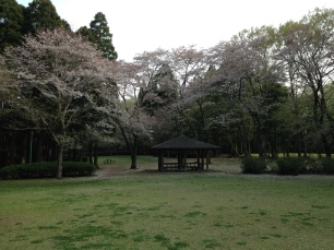Photo 2014-04-09, 3 49 23 PM